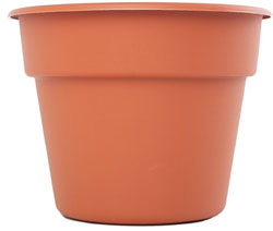 plastic pot for currants