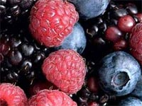 health-benefits-of-berries