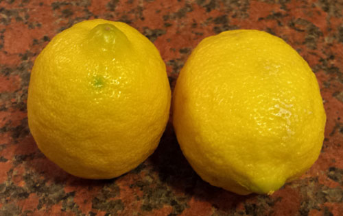 lemon-fruits-1