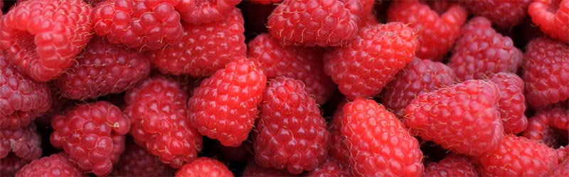 raspberries-is